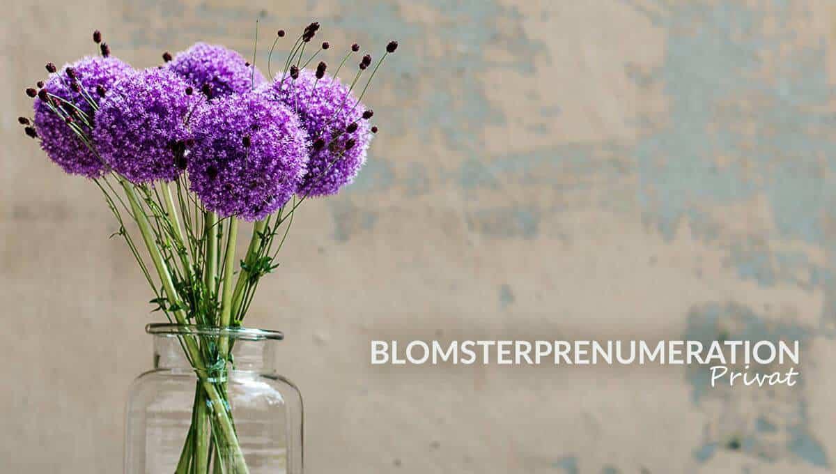 Blomsterprenumeration bukett