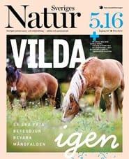Prenumerera 5 nummer av Sveriges Natur