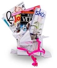 Prenumerera 1 nummer av Tidningskungen Presentkort